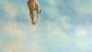 Turmspringer groß, C. Gallmetzer